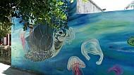 Bảo vệ rùa biển qua làng bích họa đảo Lý Sơn