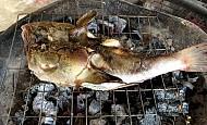 Cá bồng bồng đặc sản xứ Quảng