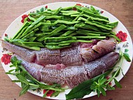 Cá Mó nấu canh chua ở Quảng Ngãi