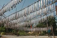 Đậm đà cá hố biển đảo Lý Sơn