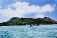 Đảo Lý Sơn khuyến khích trồng cây xanh lưu niệm