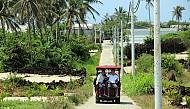 Đảo Lý Sơn Phát triển du lịch cộng đồng