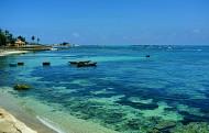 Hành trình khám phá vẻ đẹp biển đảo Lý Sơn