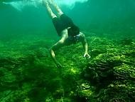 Khám phá rạn san hô Gành Yến- Quảng Ngãi