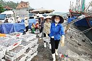Lộc biển về với ngư dân biển đảo Lý Sơn