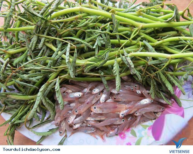 Cá man man đặc sản mùa hè xứ Quảng