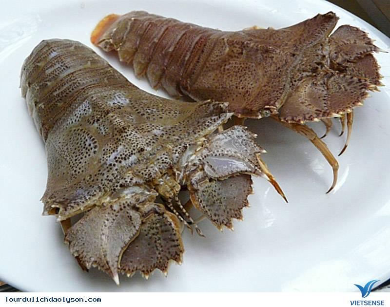 Loài tôm siêu đắt hút khách đại gia ở Lý Sơn